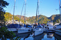 Yachts resting in the Marina early in the morning Royalty Free Stock Photo
