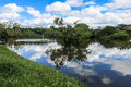 Yacuma river. Bolivian jungle. Royalty Free Stock Photo