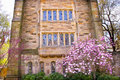 Yale University Victorian Building Magnolia Stock Photo