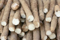 Yam Royalty Free Stock Photo