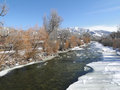 Yampa River with ice and cottonwoods in winter, Stock Photo