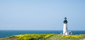 Yaquina Head Lighthouse In Bloom