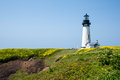 Yaquina head lighthouse in bloom with wild flowers full along the oregon coastline perched above the pacific ocean Stock Photos