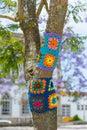 Yarn bombing in trees. European park. Royalty Free Stock Photo