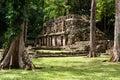 Yaxchilan Maya ruins in Mexico Royalty Free Stock Photo
