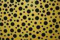 Yayoi Kusama Yellow Polka Dot ...