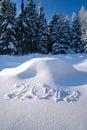 Year 2012 written in Snow Stock Photo
