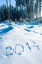 Year 2014 in Winter Forest Stock Photo