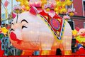 Year of Pig, the Chinese Zodiac Royalty Free Stock Photo