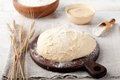 Yeast-fermented dough, pizza,bread with flour and wheat spikes Royalty Free Stock Photo