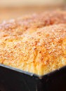 Yeast sponge cake crust Stock Images