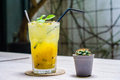 Yello sparkling drink for your summer day passion fruit mango soda to quench thirst on the wooden table with small cactus Royalty Free Stock Images