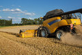 Yellov combine on field harvesting gold wheat Royalty Free Stock Photography