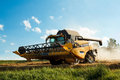 Yellov combine on field harvesting gold wheat Royalty Free Stock Photos