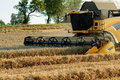 Yellov combine on field harvesting gold wheat Royalty Free Stock Images