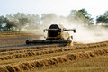 Yellov combine on field harvesting gold wheat Stock Images