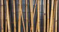 Yellow bamboo fence background on the black wood Royalty Free Stock Photo