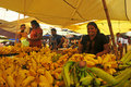 Yellow banana shop - Tangalla Market (Sri Lanka) Royalty Free Stock Photo