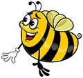 Yellow bee vector cartoon of funny happy with glove on white background Royalty Free Stock Images