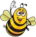 Yellow bee vector cartoon of funny happy with glove on white background Stock Photo