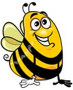 Yellow bee vector cartoon of funny happy with glove on white background Stock Photos