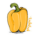 Yellow bell pepper sketch style vector illustration Royalty Free Stock Photo