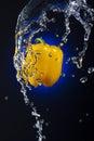 Yellow Bell Pepper Splash Stock Photos