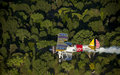 Yellow biplane over trees Royalty Free Stock Photos