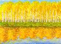 Yellow birch forest in autumn, painting Royalty Free Stock Photo