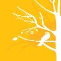 Yellow bird on tree Royalty Free Stock Photo