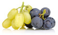 Yellow and Black grapes Royalty Free Stock Photo