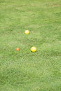 Yellow bocce balls on a green lawn lush grass Royalty Free Stock Photo