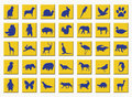 Yellow buttons with animals Royalty Free Stock Photos