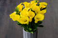 Yellow Calla lilies Royalty Free Stock Photo