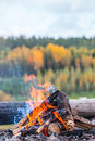 Yellow campfire on september in finland the background out of focus autumnal forest image includes a effect Stock Photo