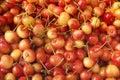 Yellow cherries. Stock Photo