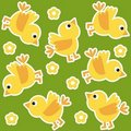 Yellow chicks Royalty Free Stock Images