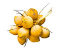 Yellow coconut Royalty Free Stock Photography