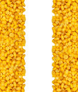 Yellow corn grain isolated on white background Royalty Free Stock Photo