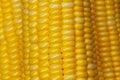Yellow corn skin pretty closeup Royalty Free Stock Photo