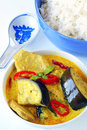 Yellow curry with pork Stock Photography