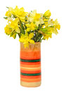 Yellow daffodils (narcissus) flowers in a vibrant colored vase, close up, white background, isolated Royalty Free Stock Photo