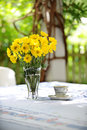 Yellow Daisies and tea Cup Outdoors Stock Photography