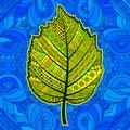 Yellow decorative leaf. Royalty Free Stock Photo