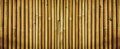 Yellow dried bamboo fence texture, bamboo texture background Royalty Free Stock Photo