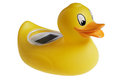 Yellow duck toy batch thermometr Stock Photos