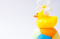 Yellow duck toy on toy soccer ball with white background Royalty Free Stock Photo