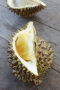 Yellow durian close up of on table Stock Images