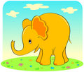 Yellow elephant. Royalty Free Stock Photography