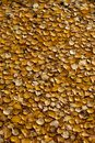 Yellow Fallen Leaves On The Water. Autumn Background From Leaves. Saturated Color